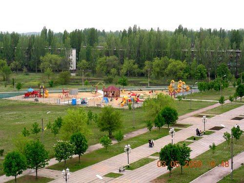 Возле детской площадки в дендропарке хотят посадить несколько десятков березок