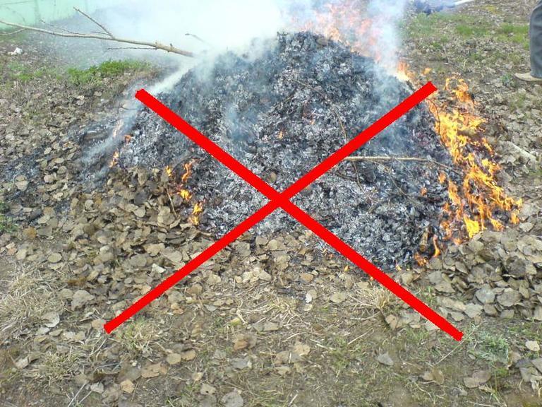 Спалювати сміття – заборонено!