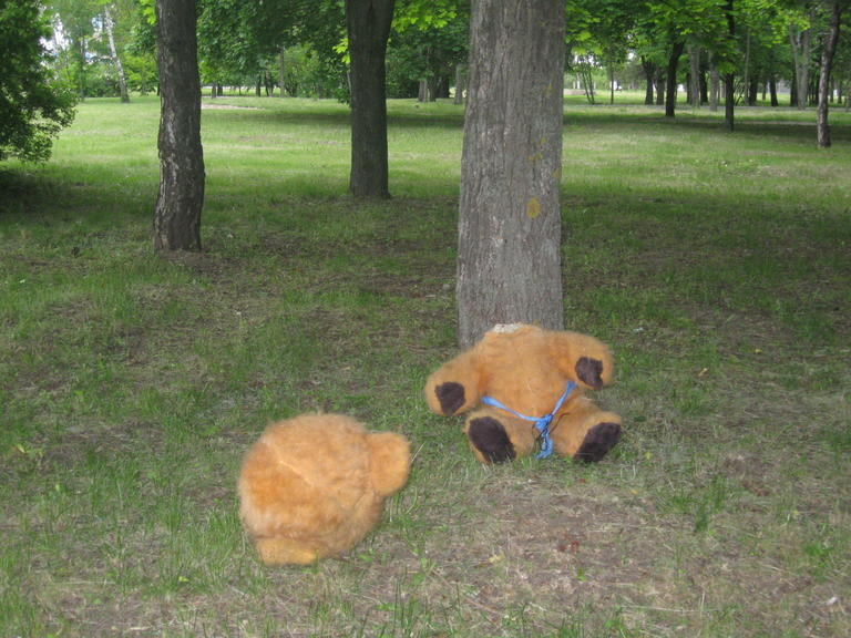 """""""Шутливое"""" убийство - в дендропарке нашли обезглавленного медведя"""