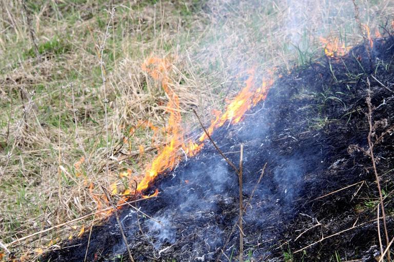 Огненный август. Многочисленные случаи возгораний травы