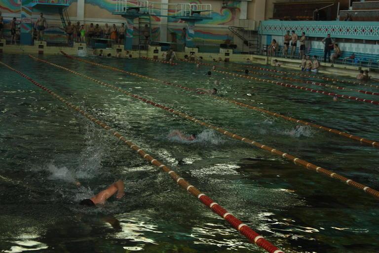 Прошел чемпионат ОГОКа по плаванью (+ВИДЕО)