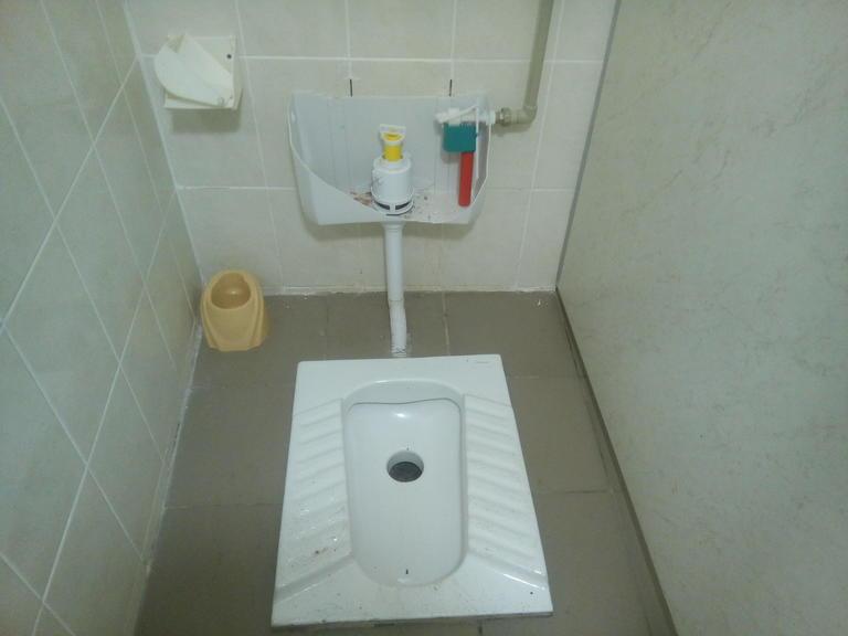 Что творится в новом общественном туалете?