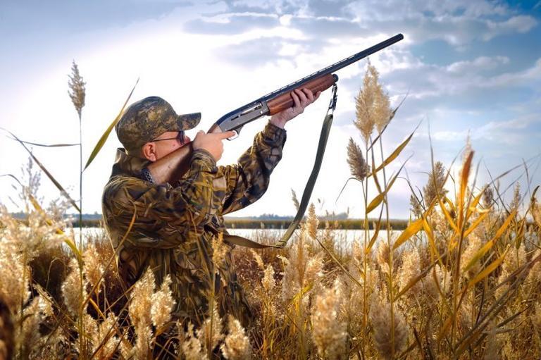 5 серпня на Дніпропетровщині стартує мисливський сезон полювання на пернату дичину.