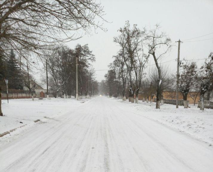 Первая снежная неделя. Как сработали коммунальщики?