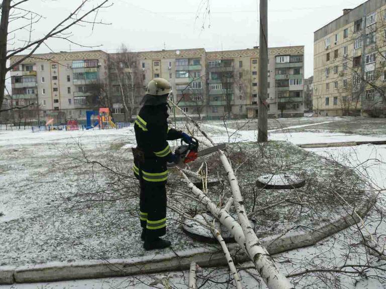 Вследствие непогоды дерево рухнуло на проезжую часть