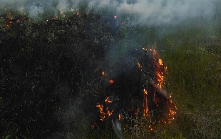 В Покрове опять горит сухая трава