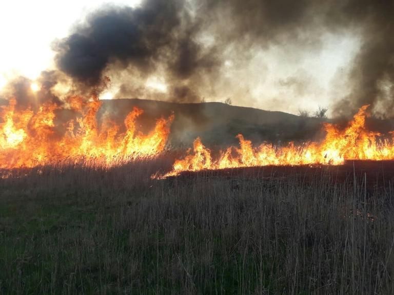 В Горняцком сгорело несколько гектаров сухой травы