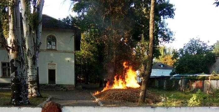 «Дерево, мне тебя жалко»: в соцсетях появилось видео пожара на территории горбольницы (ВИДЕО)