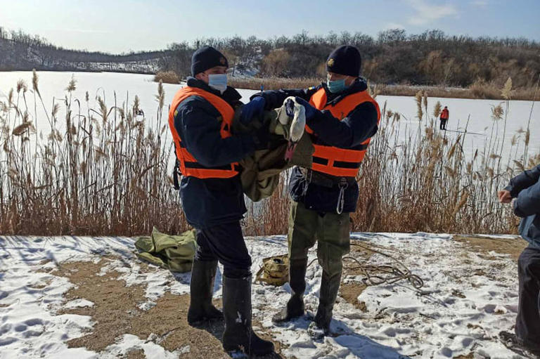 В Покрове спасатели помогли лебедю